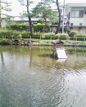 ね つり 公園 が 池
